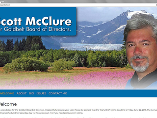 scott-mcluer-websites